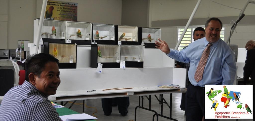 ABE Show Trujillo Alto, Puerto Rico - Judge Luis Ocasio explaining to the exhibitors and Bobby Badilla, secretary in the roseicollis Division. Courtesy Gerardo Toledo